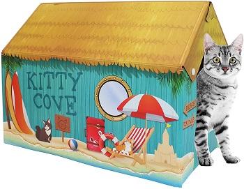 American Cat Club House