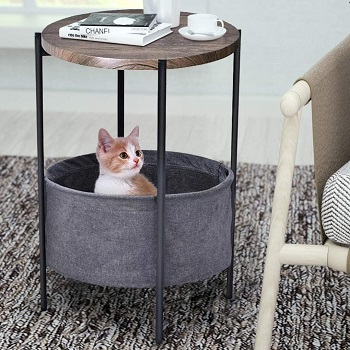 Amolife Nice Looking Cat Furniture Review
