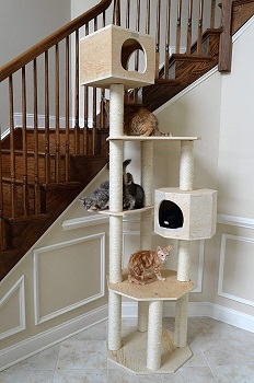 Armarkat Cat Condo Tall Tree Review