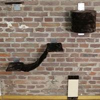 Aveen Cat Wall Lounging Set Summary