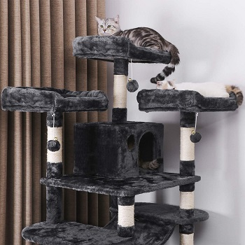 Bewishome Sturdy Cat Condo Tree Review