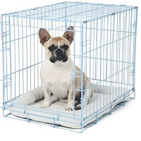Carlson Blue Metal Dog Crate Summary