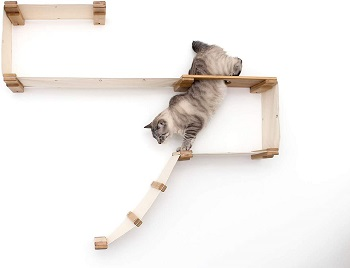 CatastrophiCreations Wall Cat Playland review