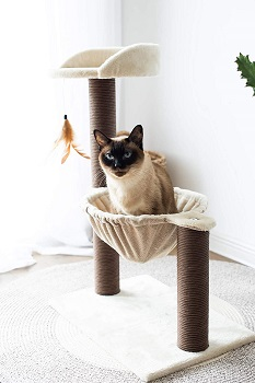 Catry Cat Tree review