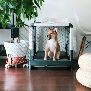 Diggs Revol Dog Crate For Puppies