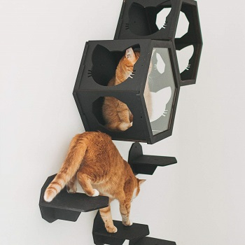 Enjoy The Wood Wall Cat Tree Review