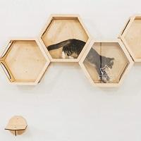 Enjoy The Wood Wall Cat Tree Summary