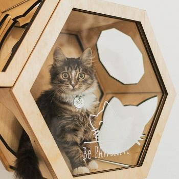 Enjoy The Wood Wall Cat Tree