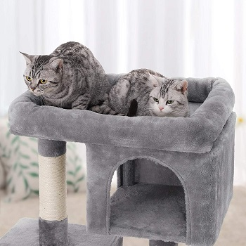 Feandrea Two-Level Condo Cat Tree Review