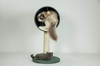 FurryTail Scandinavian Cat Tree Condo
