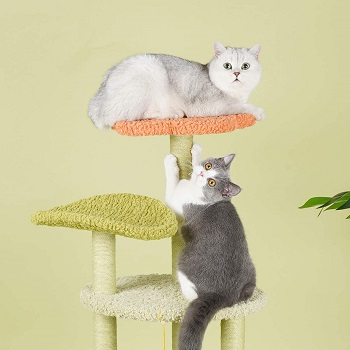 Furrytail Scratching Tree For Cats Review