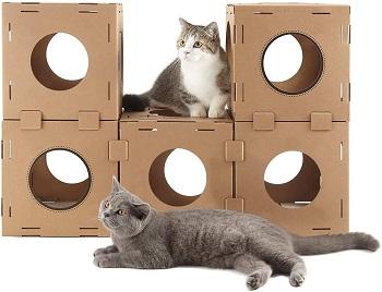 Golden Tech Cat Cube review