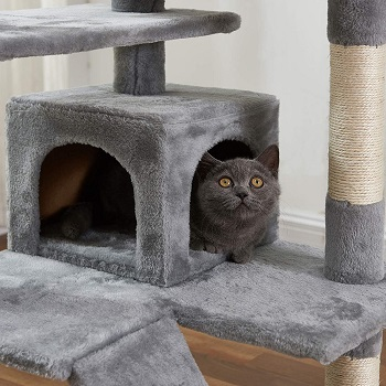 Hovtoil Most Expensive Cat Tower Summary