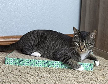 Kitty City XL Scratcher