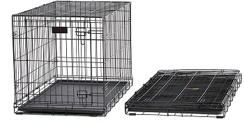 MidWest Homes for Pets Dog Crate Review