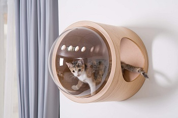 Myzoo Minimalist Cat Furniture Review