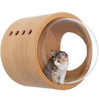 Myzoo Minimalist Cat Furniture Summary