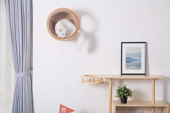 Myzoo Minimalist Cat Furniture