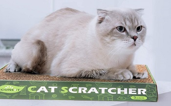 NN 3 in 1 Cat Scratcher