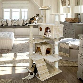 Nova Microdermabrasion Big Cat Tower Review