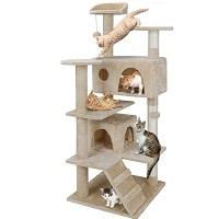 Nova Microdermabrasion Big Cat Tower Summary