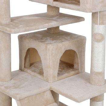 Nova Microdermabrasion Big Cat Tower