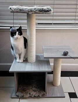 Oak & Paw Cat Resort Luxury Cat Tree