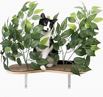 On2 Pets Natural Cat Climbing Shelves Review