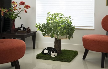 On2 Pets Natural Home Cat Tree Review