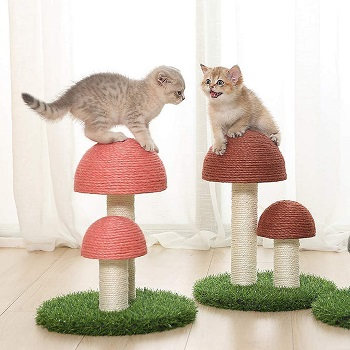OpeCking Activity Tree For Cats
