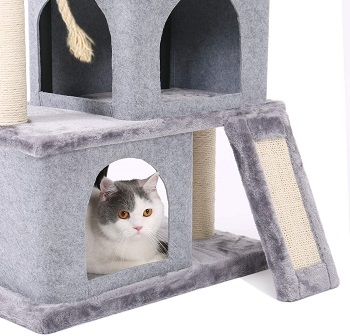 Pawz Road Cat Tree review