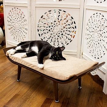 Penn Plax Cat Bed