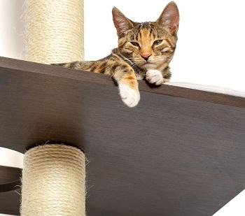 Petfusion Wall Skinny Cat Tower