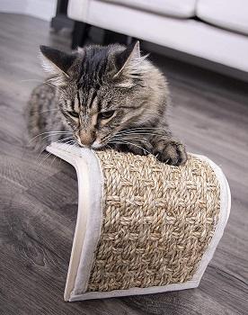 Petlinks Floor Cat Scratcher review