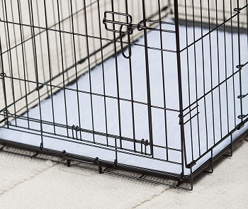 Petmate ProValu Wire Dog Crate Review