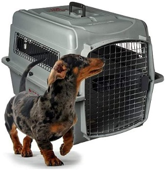 Petmate Sky Kennel Pet Carrier
