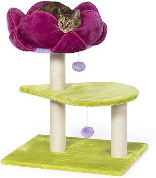 Prevue Flower Power Cat Tree Review