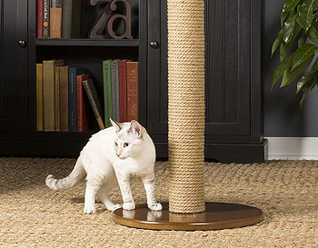 Prevue Pet Products Cat Post review