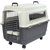 SportPet Designs Plastic Kennel Summary
