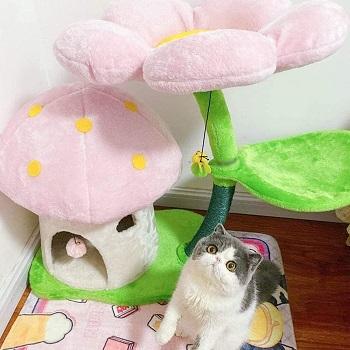 TGHY Mushroom Climbing Tower For Cats