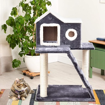 Tangkula Cat Kitty Tower Condo Review