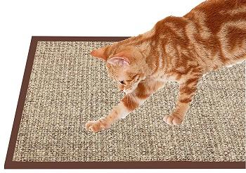 Treasborn Cat Scratcher review