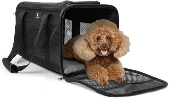 BEST SMALL DOG FLIGHT CRATE