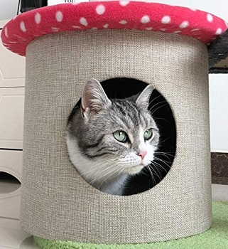 Yaqeen Flower Cat Tower