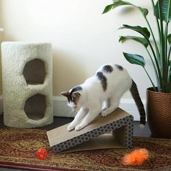 iPrimio Cat Scratcher Ramp review