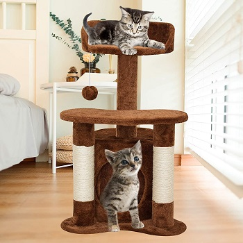 67i Cat Tree For Two Kittens Review