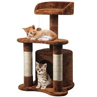 67i Cat Tree For Two Kittens Summary