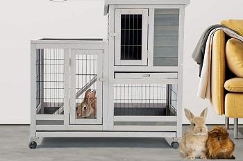 Aoxun Rabbit Hutch