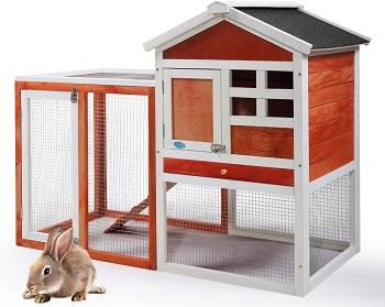 BEST 2 STORIES FLEMISH Jaxpety Rabbit Hutch