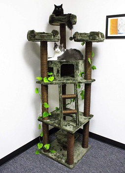 BEST LARGE WITH BRANCHES Cozy Furniture Cat Tree